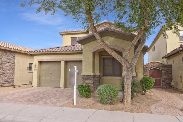 2425 N 142ND Avenue, Goodyear, AZ 85395 (MLS #5847248) :: The AZ Performance Realty Team