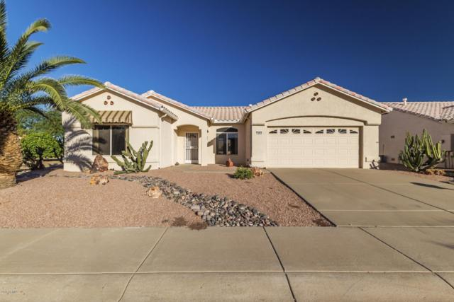 14034 W Blackgold Lane, Sun City West, AZ 85375 (MLS #5847263) :: Riddle Realty