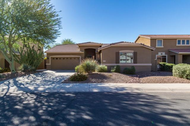 81 W Birchwood Place, Chandler, AZ 85248 (MLS #5847301) :: Team Wilson Real Estate