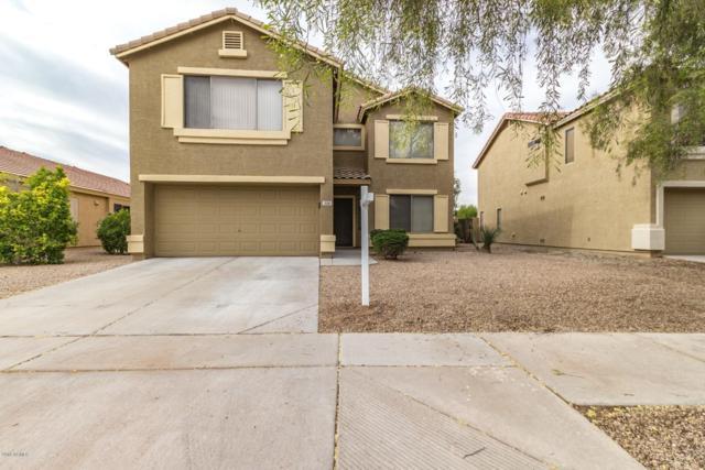 334 N 166TH Lane, Goodyear, AZ 85338 (MLS #5847307) :: Santizo Realty Group