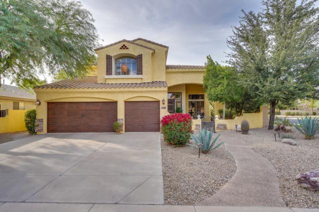 5816 S Robins Way, Chandler, AZ 85249 (MLS #5847315) :: The Jesse Herfel Real Estate Group