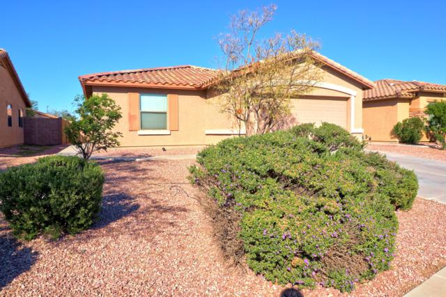25078 W Dove Trail, Buckeye, AZ 85326 (MLS #5847321) :: The Garcia Group