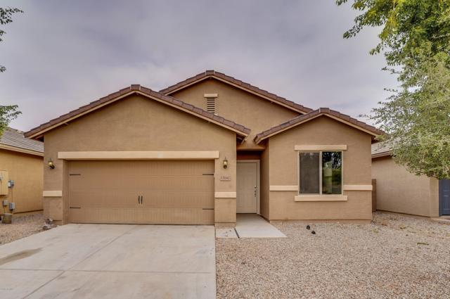 13142 E Marigold Lane, Florence, AZ 85132 (MLS #5847331) :: Yost Realty Group at RE/MAX Casa Grande