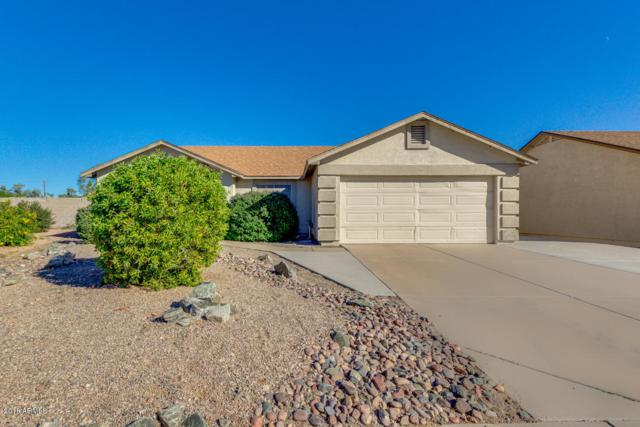 1669 S Cardinal Drive, Apache Junction, AZ 85120 (MLS #5847333) :: Yost Realty Group at RE/MAX Casa Grande
