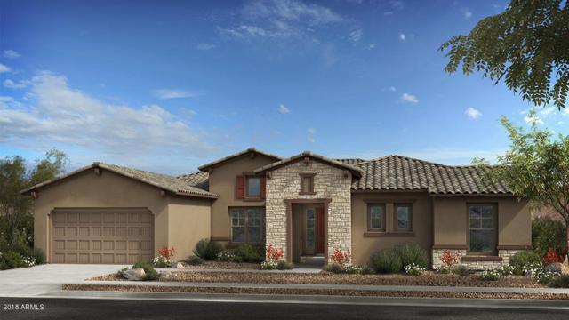 24938 N 88th Lane, Peoria, AZ 85383 (MLS #5847346) :: Phoenix Property Group