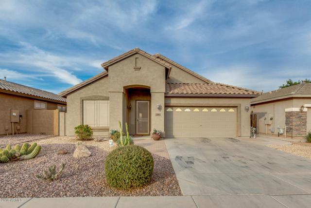 230 E Rock Wren Drive, San Tan Valley, AZ 85143 (MLS #5847358) :: The Jesse Herfel Real Estate Group