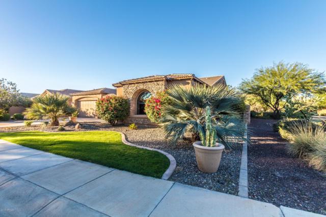 3182 E San Carlos Place, Chandler, AZ 85249 (MLS #5847373) :: The Jesse Herfel Real Estate Group
