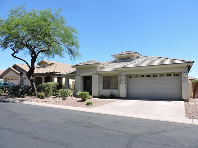 7415 E Nora Street, Mesa, AZ 85207 (MLS #5847395) :: The Jesse Herfel Real Estate Group