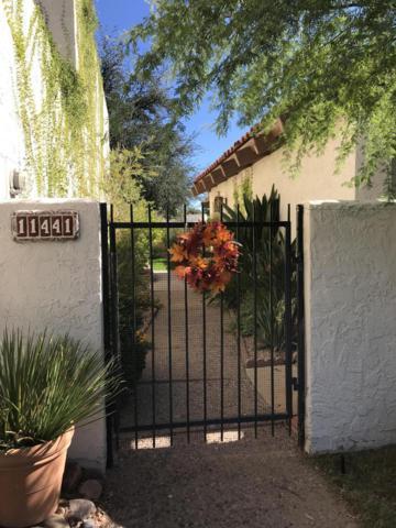 11441 N 30TH Avenue, Phoenix, AZ 85029 (MLS #5847407) :: The Carin Nguyen Team