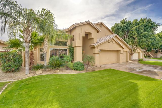 771 W Hackberry Drive, Chandler, AZ 85248 (MLS #5847430) :: Revelation Real Estate
