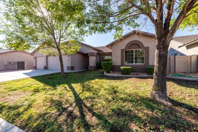 4116 S 78TH Lane, Phoenix, AZ 85043 (MLS #5847448) :: Realty Executives