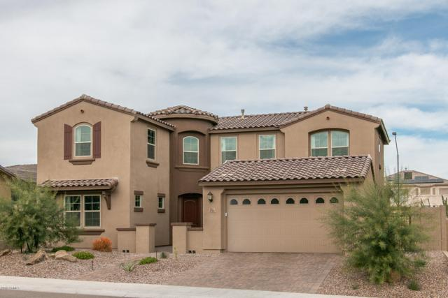 13764 W Sarano Terrace, Litchfield Park, AZ 85340 (MLS #5847472) :: Lifestyle Partners Team