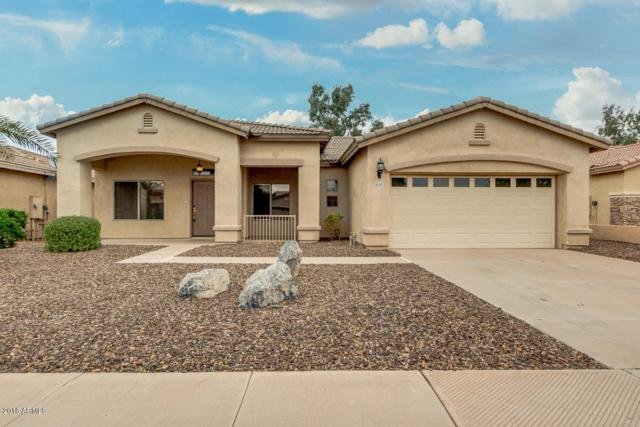 21152 E Lords Way, Queen Creek, AZ 85142 (MLS #5847493) :: The Jesse Herfel Real Estate Group