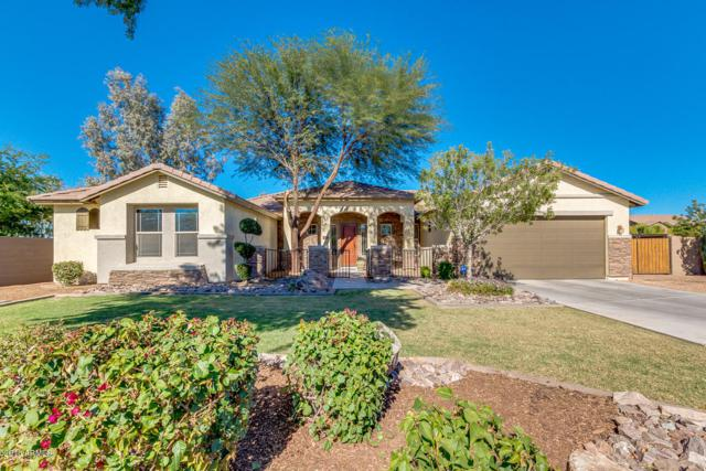 19232 E Domingo Road, Queen Creek, AZ 85142 (MLS #5847499) :: The Jesse Herfel Real Estate Group