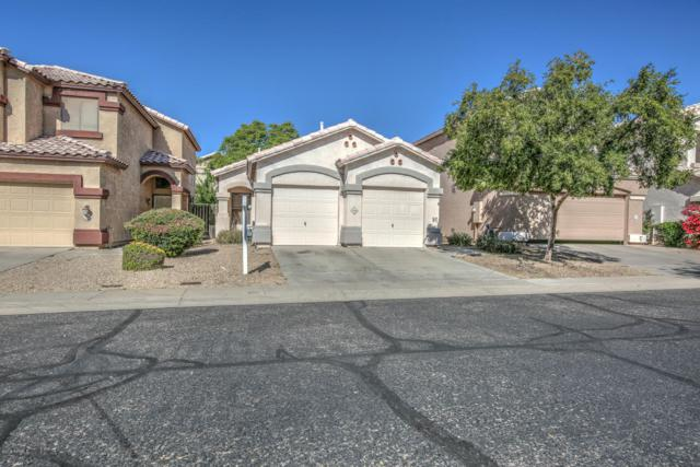 7218 E Kenwood Street, Mesa, AZ 85207 (MLS #5847502) :: The Jesse Herfel Real Estate Group