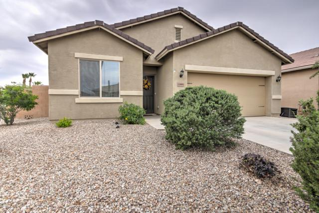 13095 E Marigold Lane, Florence, AZ 85132 (MLS #5847507) :: Arizona 1 Real Estate Team