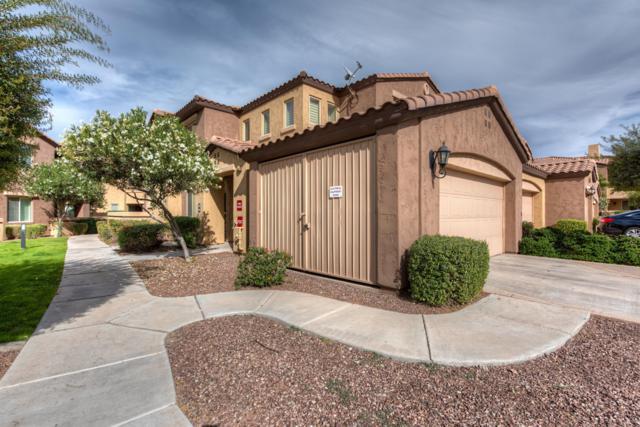 250 W Queen Creek Road #246, Chandler, AZ 85248 (MLS #5847510) :: The Jesse Herfel Real Estate Group