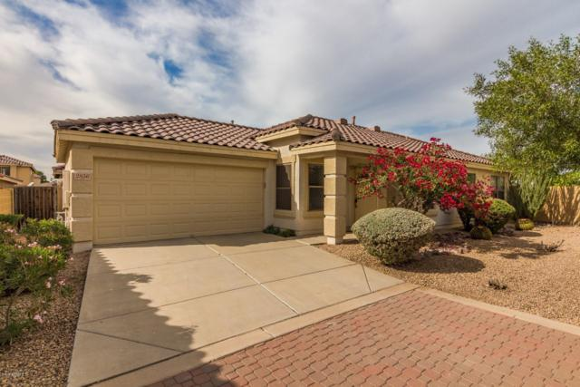 2856 E Augusta Avenue, Chandler, AZ 85249 (MLS #5847523) :: The Jesse Herfel Real Estate Group
