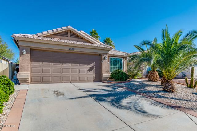 2539 N Silverado Drive, Mesa, AZ 85215 (MLS #5847528) :: The Jesse Herfel Real Estate Group