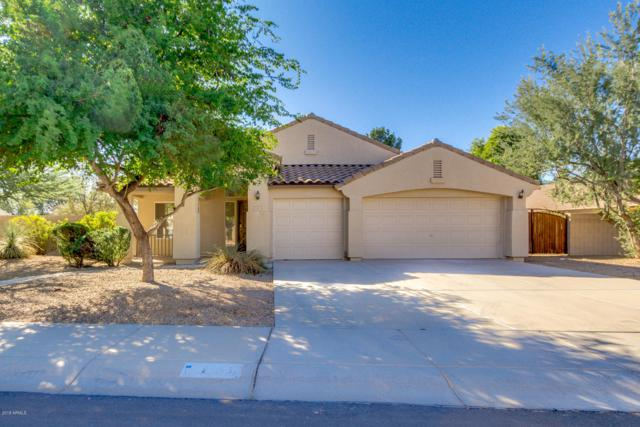 1163 E Toledo Street, Gilbert, AZ 85295 (MLS #5847555) :: Revelation Real Estate