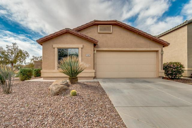 21180 N Dries Road, Maricopa, AZ 85138 (MLS #5847563) :: Yost Realty Group at RE/MAX Casa Grande