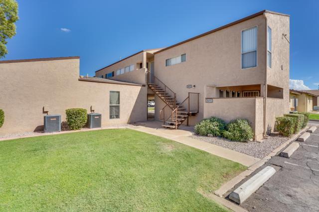 2673 E Oakleaf Drive, Tempe, AZ 85281 (MLS #5847580) :: Yost Realty Group at RE/MAX Casa Grande