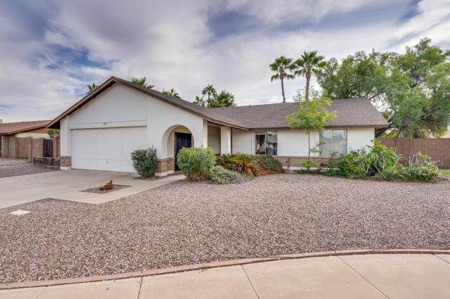 2603 W Olla Circle, Mesa, AZ 85202 (MLS #5847582) :: The Garcia Group