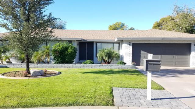 296 S Hacienda Circle, Litchfield Park, AZ 85340 (MLS #5847597) :: Yost Realty Group at RE/MAX Casa Grande