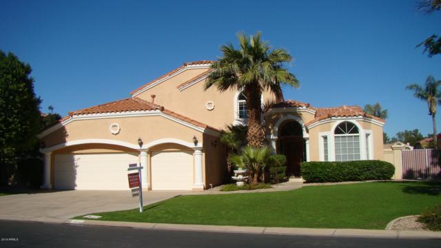 1518 E Treasure Cove Drive, Gilbert, AZ 85234 (MLS #5847599) :: Yost Realty Group at RE/MAX Casa Grande