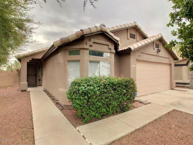8455 W Audrey Lane, Peoria, AZ 85382 (MLS #5847602) :: Kepple Real Estate Group