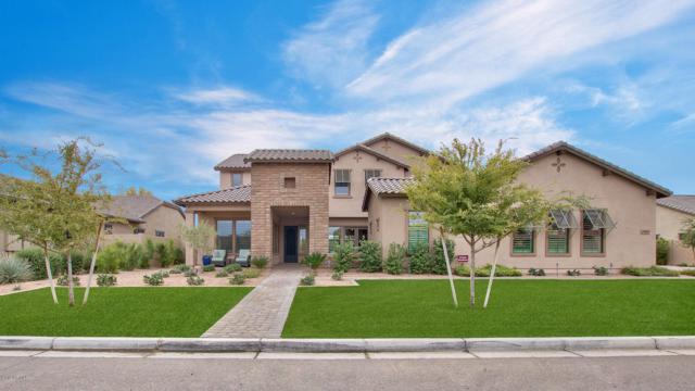 17699 E Colt Court, Queen Creek, AZ 85142 (MLS #5847603) :: Yost Realty Group at RE/MAX Casa Grande