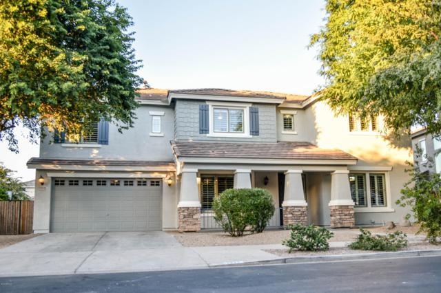 18942 E Raven Drive, Queen Creek, AZ 85142 (MLS #5847607) :: Yost Realty Group at RE/MAX Casa Grande