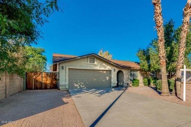 710 N Jackson Circle, Mesa, AZ 85205 (MLS #5847639) :: Yost Realty Group at RE/MAX Casa Grande