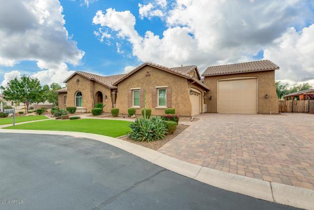 21985 E Via Del Jardin Court, Queen Creek, AZ 85142 (MLS #5847655) :: Santizo Realty Group
