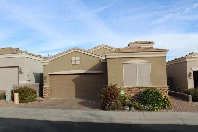 12835 N 19TH Street, Phoenix, AZ 85022 (MLS #5847658) :: RE/MAX Excalibur