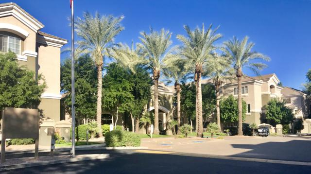 4465 E Paradise Village Parkway S #1201, Phoenix, AZ 85032 (MLS #5847662) :: RE/MAX Excalibur