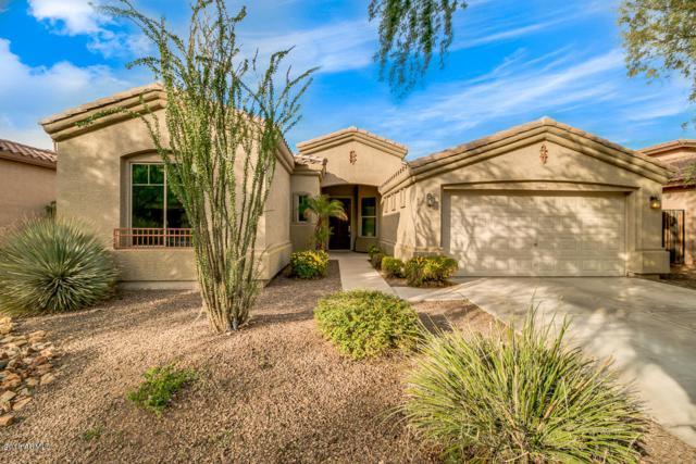 3306 W Galvin Street, Phoenix, AZ 85086 (MLS #5847668) :: Conway Real Estate