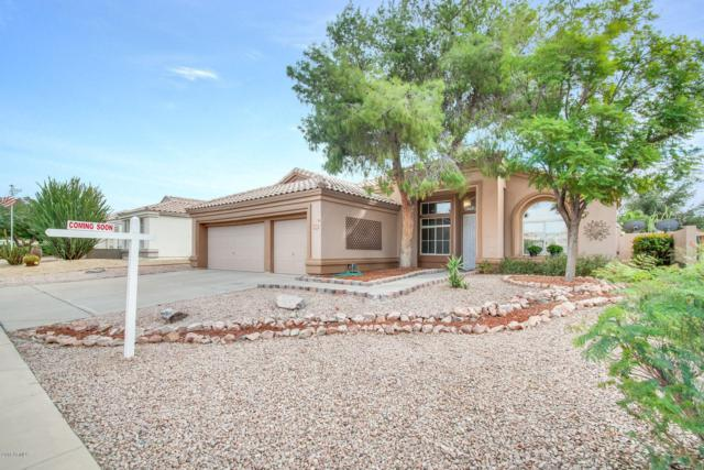 6563 E Riverdale Street, Mesa, AZ 85215 (MLS #5847673) :: Yost Realty Group at RE/MAX Casa Grande