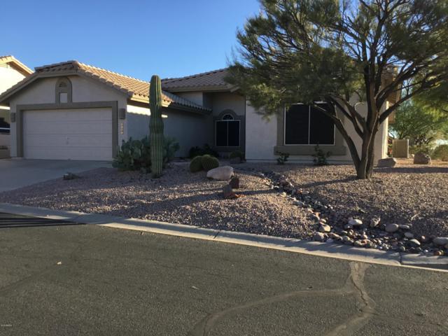 8683 E Golden Cholla Drive, Gold Canyon, AZ 85118 (MLS #5847676) :: Keller Williams Legacy One Realty
