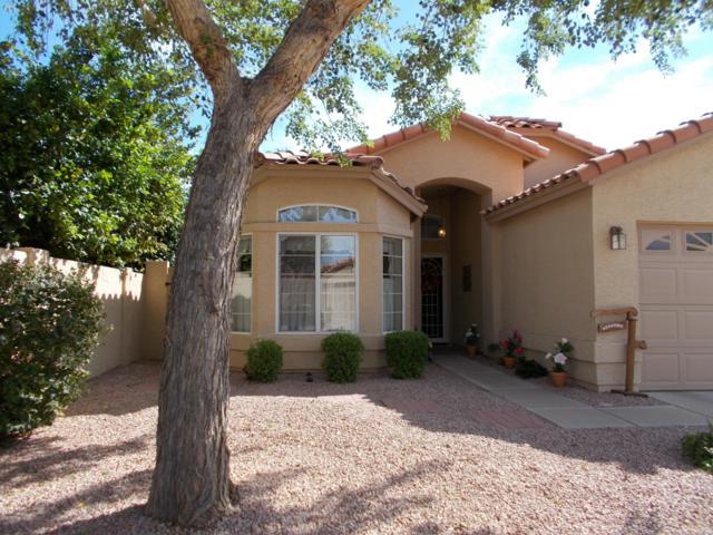 13035 S 46TH Place, Phoenix, AZ 85044 (MLS #5847706) :: The Daniel Montez Real Estate Group