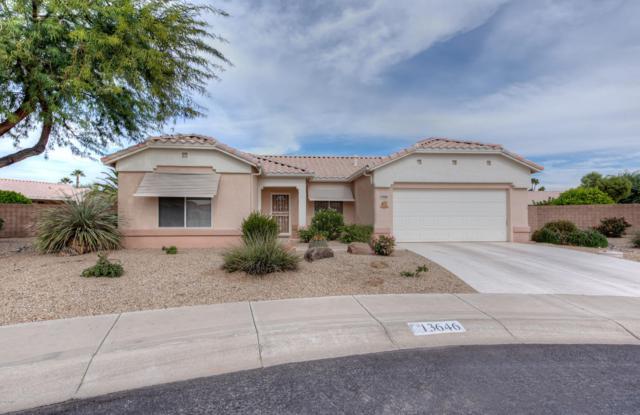 13646 W Ravenswood Drive, Sun City West, AZ 85375 (MLS #5847713) :: The Daniel Montez Real Estate Group