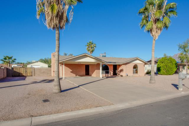 1010 E Kachina Avenue, Apache Junction, AZ 85119 (MLS #5847715) :: Yost Realty Group at RE/MAX Casa Grande