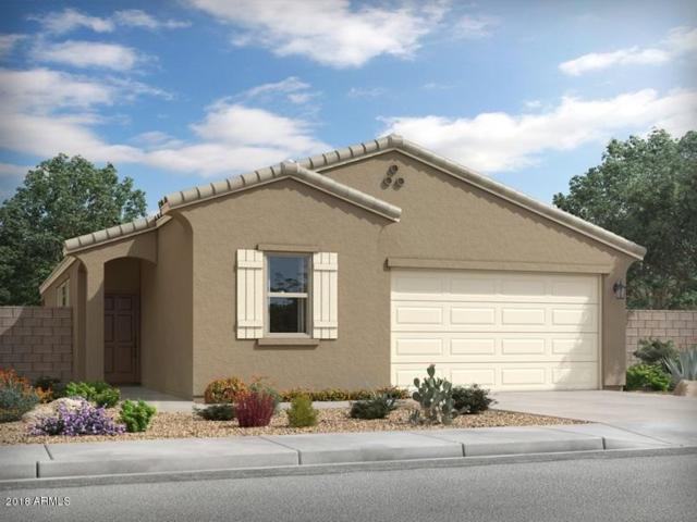 4031 W Coneflower Lane, San Tan Valley, AZ 85142 (MLS #5847720) :: Yost Realty Group at RE/MAX Casa Grande