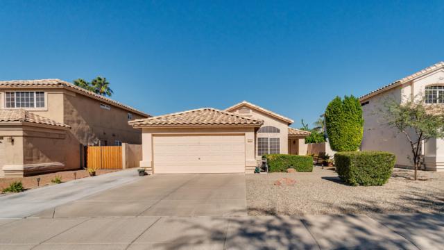 7122 W Via De Luna Drive, Glendale, AZ 85310 (MLS #5847739) :: Team Wilson Real Estate