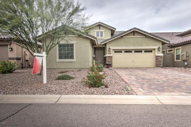 378 E Castle Rock Road, San Tan Valley, AZ 85143 (MLS #5847749) :: Yost Realty Group at RE/MAX Casa Grande