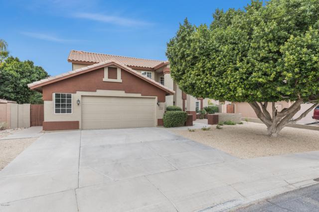 1354 S La Arboleta Street, Gilbert, AZ 85296 (MLS #5847812) :: Santizo Realty Group