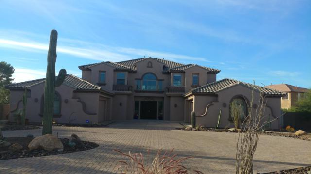 2815 E Bridgeport Court, Gilbert, AZ 85295 (MLS #5847831) :: Santizo Realty Group