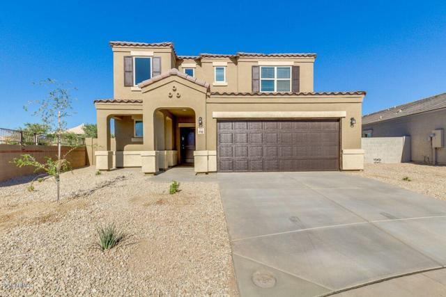 30236 W Earll Drive, Buckeye, AZ 85396 (MLS #5847855) :: Phoenix Property Group