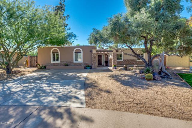 10008 N 31 Street, Phoenix, AZ 85028 (MLS #5847871) :: The Garcia Group