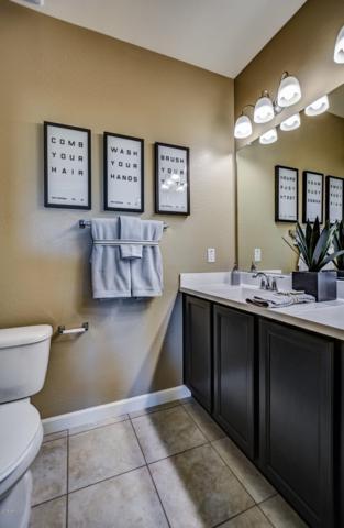 30450 W Celeborn Drive, Buckeye, AZ 85396 (MLS #5847873) :: Phoenix Property Group